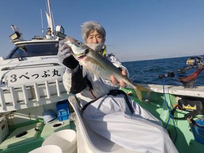 べっぷ丸の2021年4月14日(水)5枚目の写真