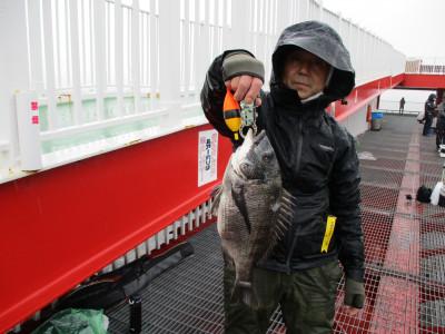 尼崎市立魚つり公園の2021年4月17日(土)2枚目の写真