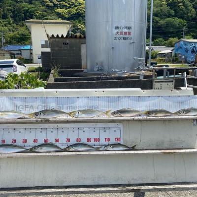 大島フィッシングの2021年4月18日(日)2枚目の写真