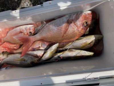 釣り船 黒潮丸の2021年4月22日(木)2枚目の写真
