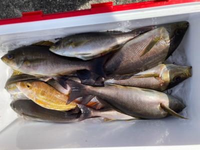 釣り船 黒潮丸の2021年4月22日(木)4枚目の写真