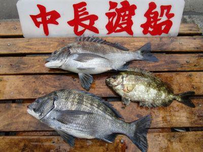 中長渡船の2021年4月23日(金)2枚目の写真
