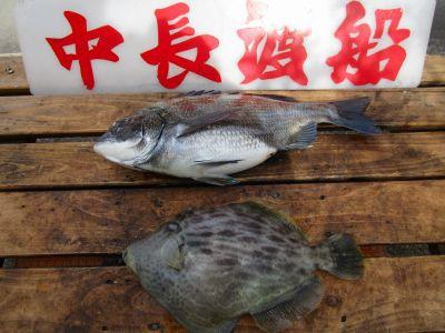 中長渡船の2021年4月23日(金)3枚目の写真