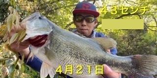 入鹿亭の2021年4月21日(水)1枚目の写真