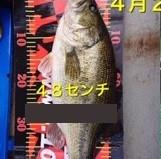 入鹿亭の2021年4月21日(水)3枚目の写真