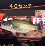 入鹿亭の2021年4月21日(水)5枚目の写真