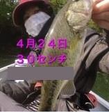 入鹿亭の2021年4月24日(土)2枚目の写真
