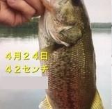 入鹿亭の2021年4月24日(土)3枚目の写真