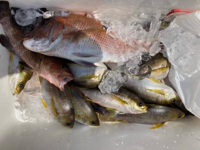 釣り船 黒潮丸の2021年4月25日(日)1枚目の写真