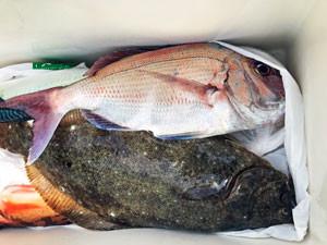 第一大漁丸の2021年4月25日(日)1枚目の写真