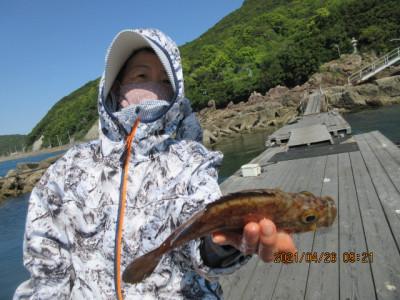 由良海つり公園&釣堀ランドの2021年4月26日(月)2枚目の写真