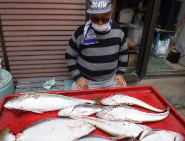 奥村釣船の2021年4月24日(土)3枚目の写真
