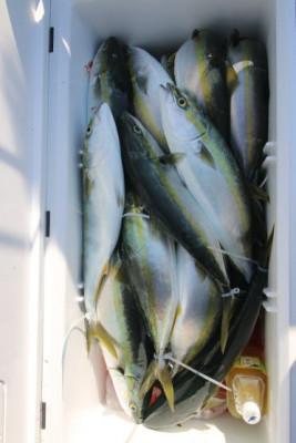 西岡遊漁の2021年4月24日(土)5枚目の写真