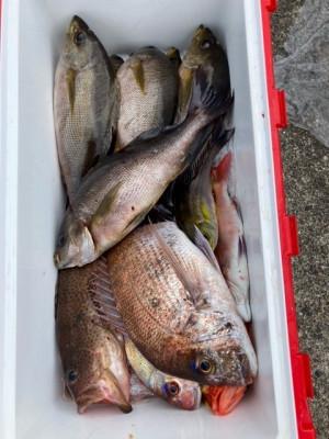 釣り船 黒潮丸の2021年4月28日(水)3枚目の写真