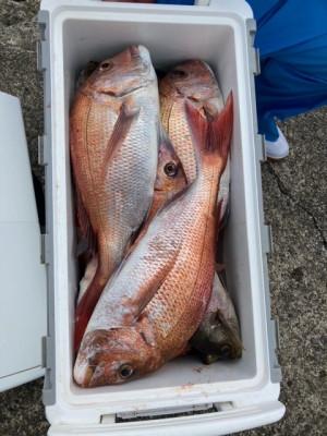 釣り船 黒潮丸の2021年4月28日(水)4枚目の写真