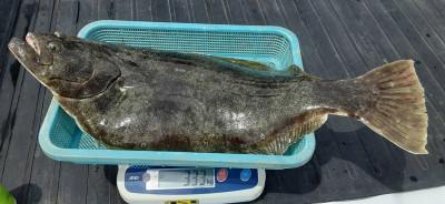 秀丸の2021年4月28日(水)2枚目の写真