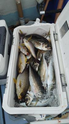 釣り船 秀進丸の2021年4月28日(水)2枚目の写真
