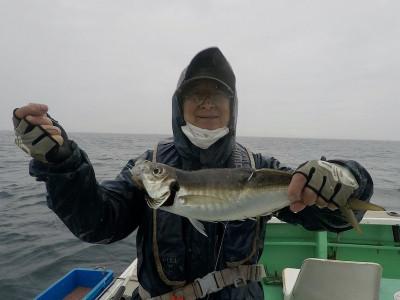 べっぷ丸の2021年4月28日(水)2枚目の写真