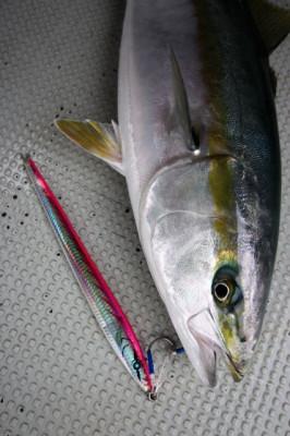 西岡遊漁の2021年4月29日(木)3枚目の写真