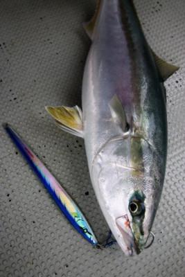 西岡遊漁の2021年4月29日(木)4枚目の写真