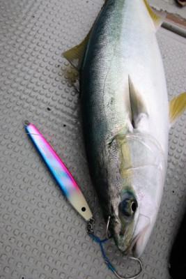 西岡遊漁の2021年4月29日(木)5枚目の写真