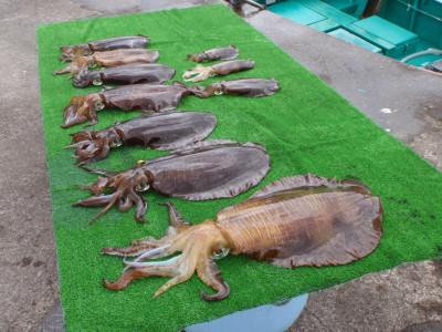 釣り船 久勝丸の2021年5月2日(日)4枚目の写真