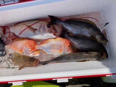 釣り船 黒潮丸の2021年5月4日(火)4枚目の写真