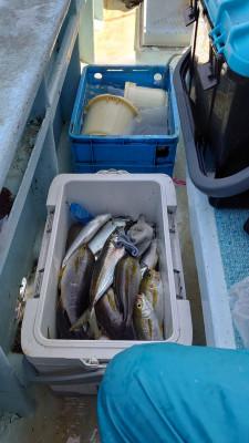 釣り船 秀進丸の2021年5月6日(木)3枚目の写真