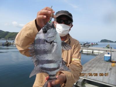 由良海つり公園&釣堀ランドの2021年5月8日(土)4枚目の写真