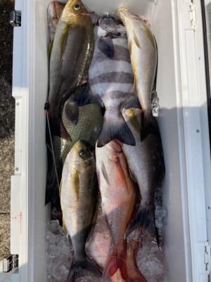 釣り船 黒潮丸の2021年5月9日(日)2枚目の写真