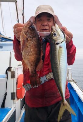 船宿 秋田屋の2021年5月7日(金)3枚目の写真
