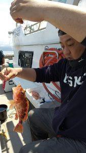 美浜釣舟センターの2021年5月11日(火)5枚目の写真