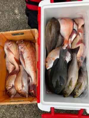 釣り船 黒潮丸の2021年5月12日(水)3枚目の写真