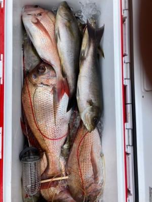 釣り船 黒潮丸の2021年5月15日(土)5枚目の写真