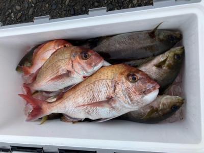 釣り船 黒潮丸の2021年5月19日(水)3枚目の写真