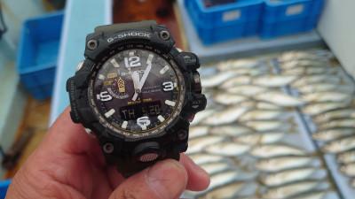 釣り船 秀進丸の2021年5月20日(木)2枚目の写真