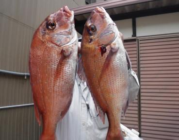 奥村釣船の2021年5月22日(土)4枚目の写真