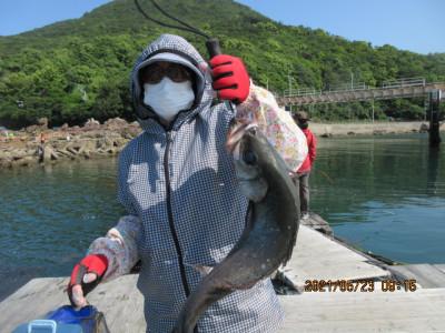 由良海つり公園&釣堀ランドの2021年5月23日(日)3枚目の写真