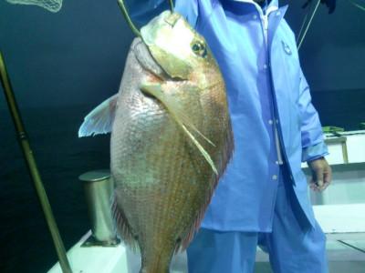 釣り船 みらいの2021年5月24日(月)1枚目の写真