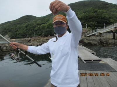 由良海つり公園&釣堀ランドの2021年5月26日(水)1枚目の写真