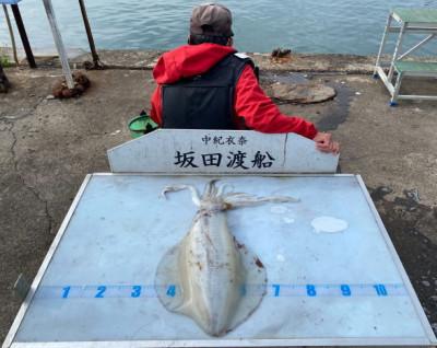 坂田渡船の2021年5月26日(水)4枚目の写真