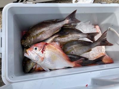 釣り船 黒潮丸の2021年5月28日(金)3枚目の写真