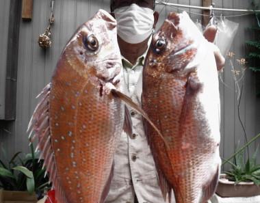 奥村釣船の2021年5月28日(金)3枚目の写真