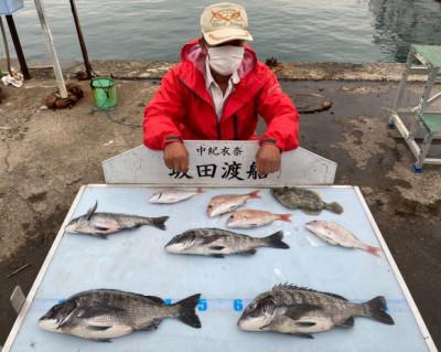 坂田渡船の2021年5月28日(金)3枚目の写真