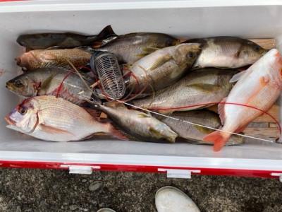 釣り船 黒潮丸の2021年5月29日(土)2枚目の写真