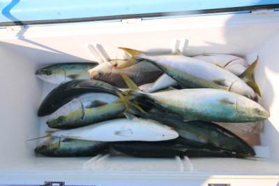 西岡遊漁の2021年5月30日(日)4枚目の写真