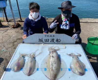 坂田渡船の2021年5月31日(月)1枚目の写真