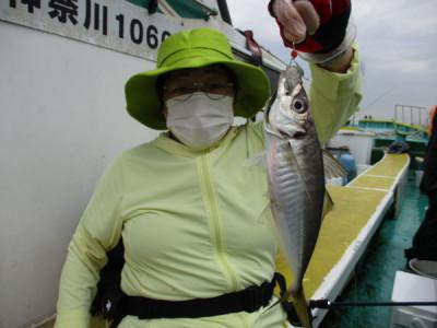 打木屋釣船店の2021年6月7日(月)4枚目の写真