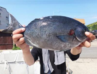 丸銀釣りセンターの2021年6月9日(水)1枚目の写真