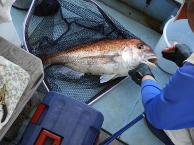 釣具の海友の2021年6月10日(木)4枚目の写真